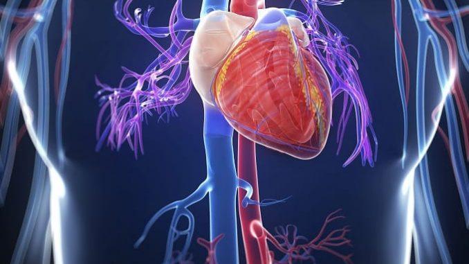 Mehr als 350.000 Menschen sterben jährlich in Deutschland an Herz-Kreislauf-Erkrankungen. - Foto: djd/Amgen GmbH
