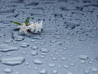 Sammeln und speichern von Regenwasser die bessere Alternative.