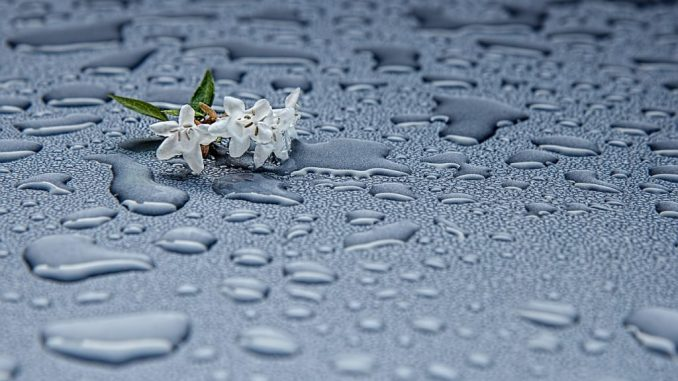 Relativ Regenwasser sammeln im Garten « alltagstipp YS95