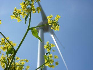 Bei Ökostrom geht man davon aus, das der Strom aus erneuerbaren Energien gewonnen wird.